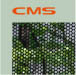 CMS Records